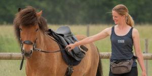 Druck im Pferdetraining